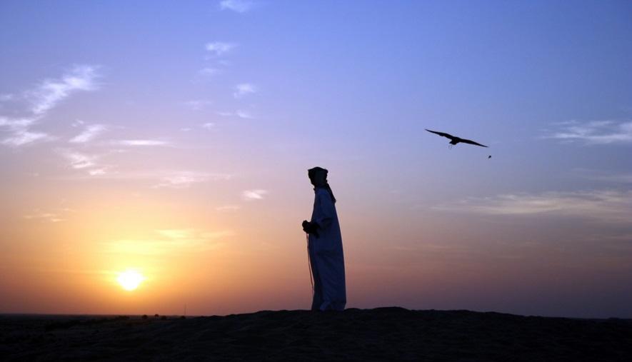 Super Dubai & Deserto