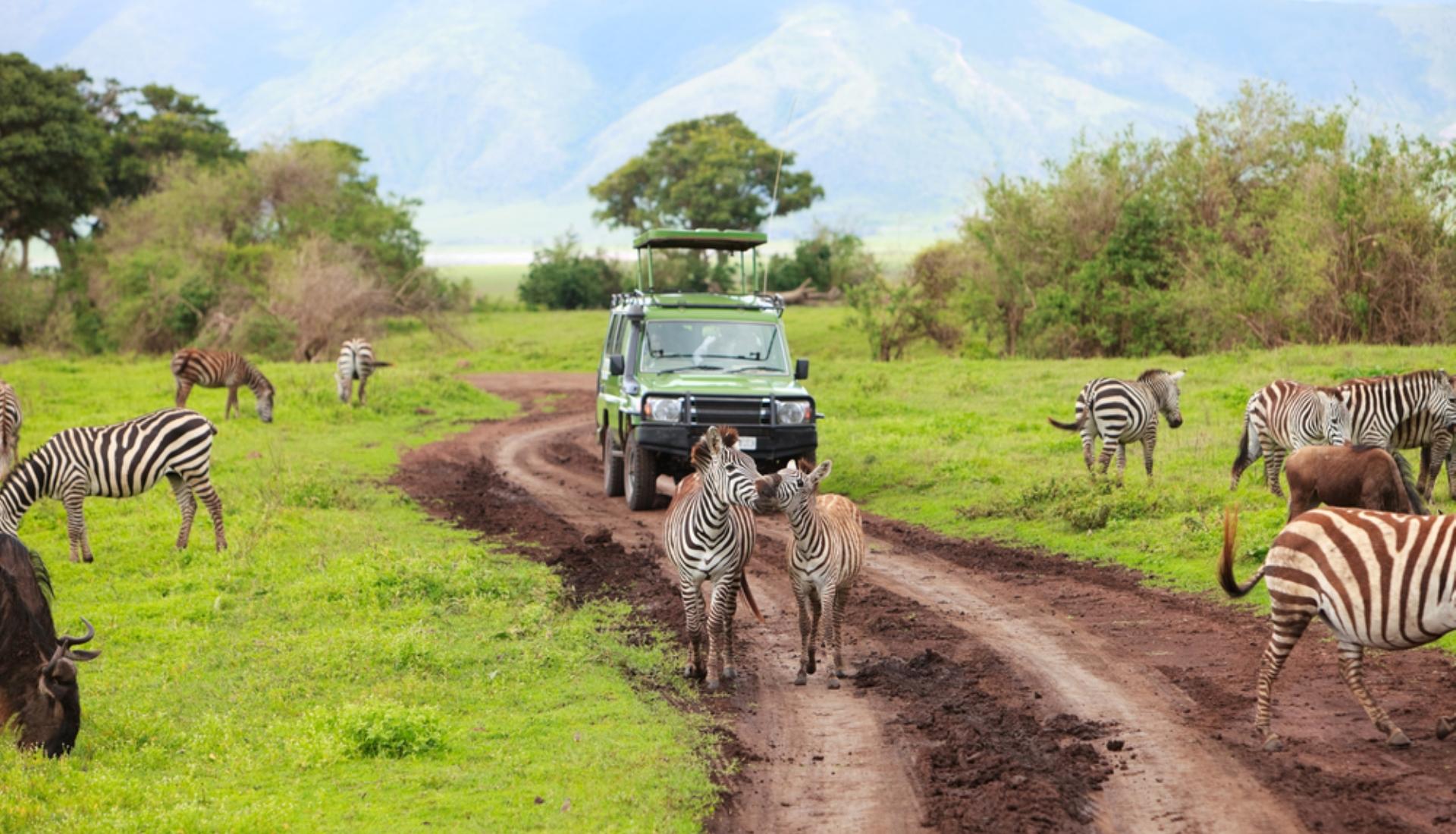 Rota do Serengeti