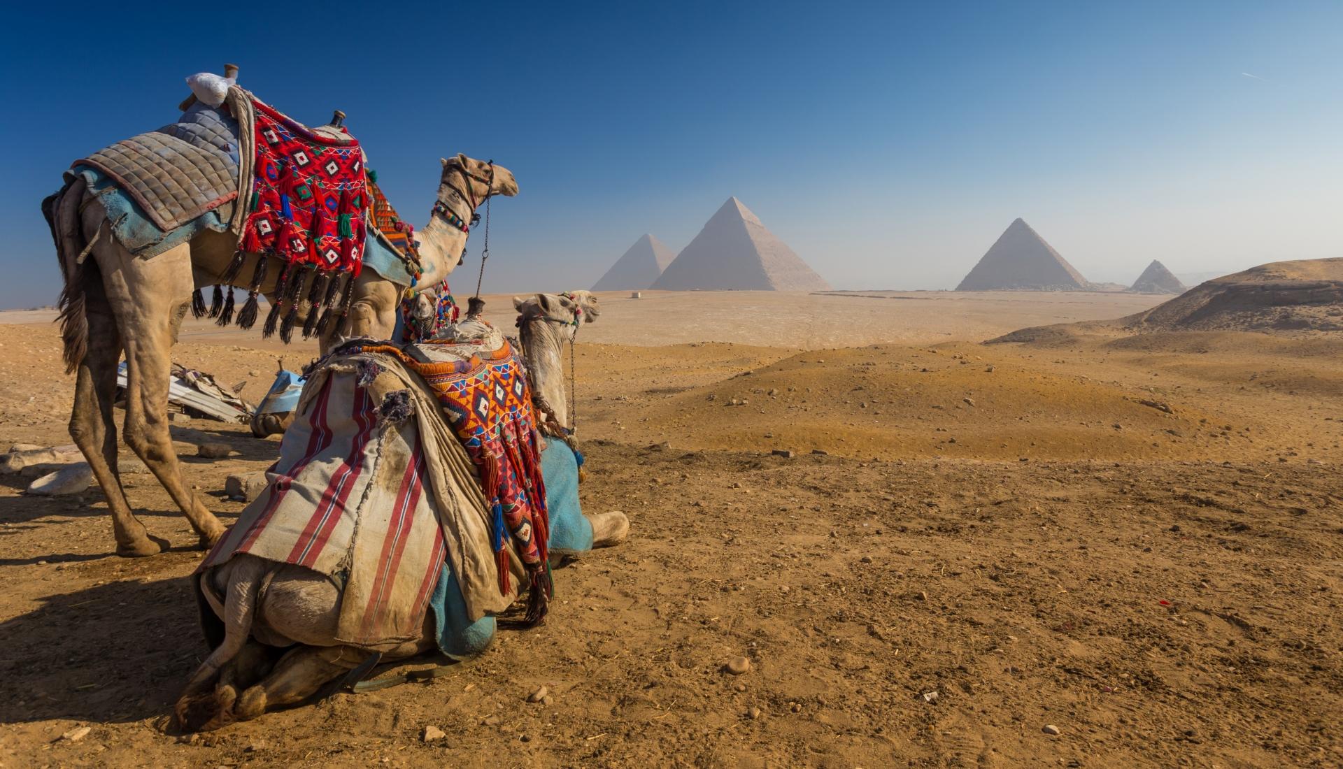 O Melhor do Egipto - Voos Egyptair
