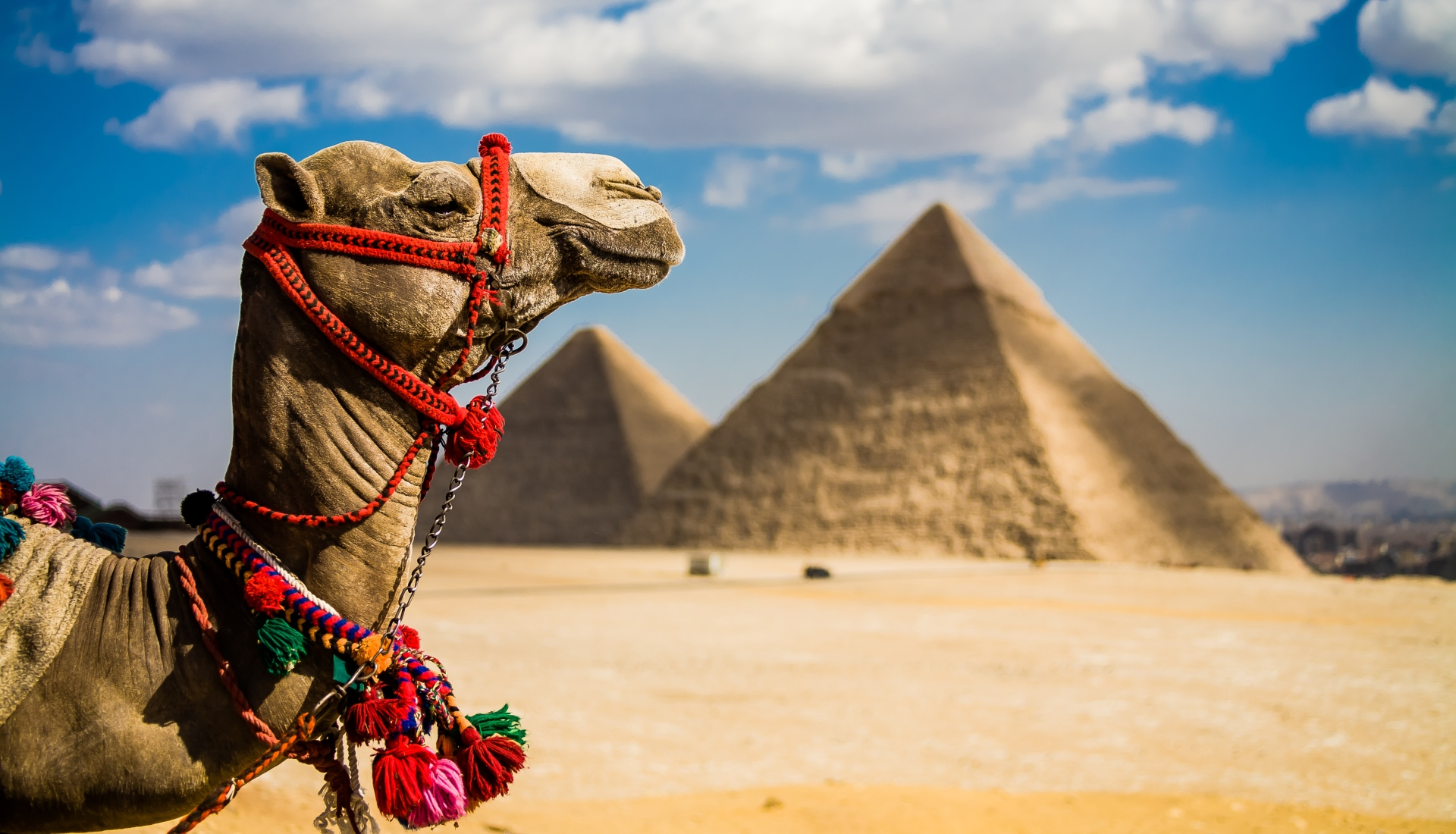 Egipto Mágico - até Abril 2022