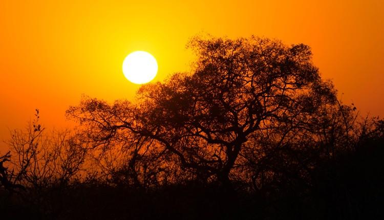 Lendas África Sul+Rota Jardim