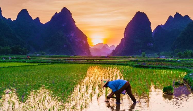Vietname e Cambodja com Phnon Penh
