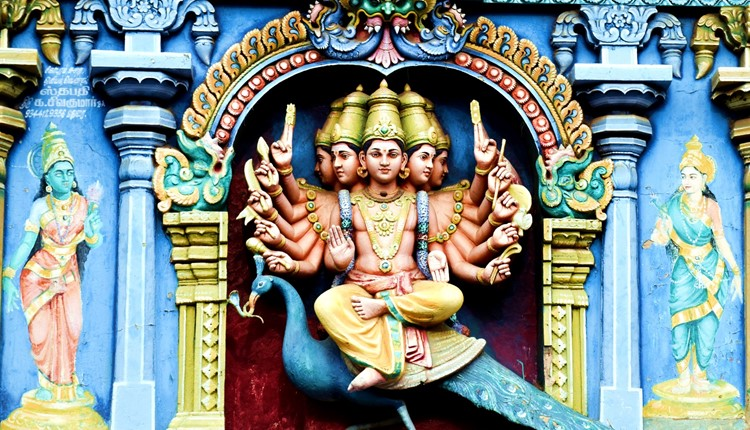 Essências do Sul da Índia