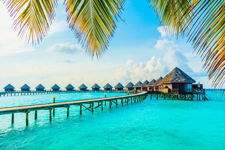 /optitravel/online/www/layout22/single_product.php?pkt_id=864&Produto=Maldivas | Lugares Garantidos EK - Partida de Lisboa a 30/03&destino=MALDIVAS