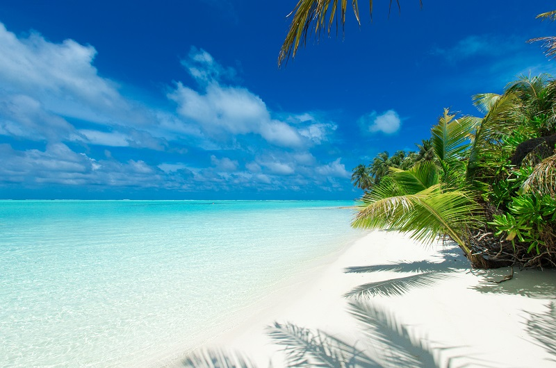https://pt.tui.com/single_product.php?pkt_id=558&Produto=Dubai & Maldivas&destino=MALDIVAS