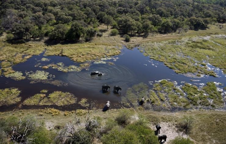 /optitravel/online/www/layout22/single_product.php?pkt_id=194&Produto=Cataratas e Parques do Botswana&destino=BOTSWANA