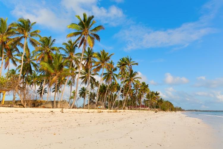 /optitravel/online/www/layout22/single_product.php?pkt_id=33&Produto=Zanzibar&destino=TANZÂNIA