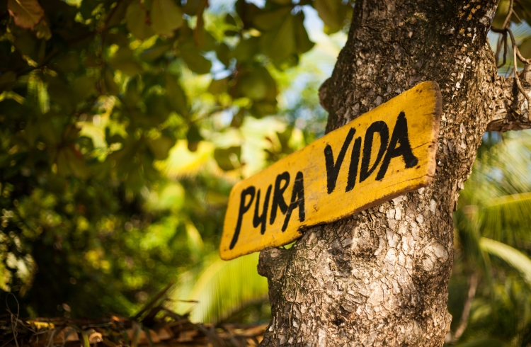 /optitravel/online/www/layout22/single_product.php?pkt_id=71&Produto=Pura Vida c/ Guanacaste&destino=COSTA RICA